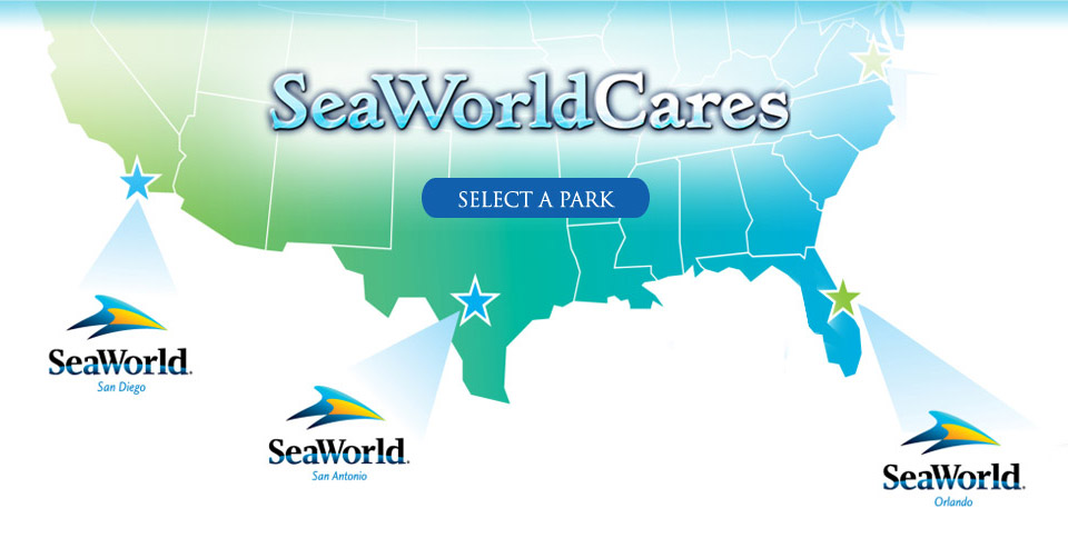 seaworld is one of the
